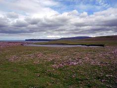 Eshaness, Shetland, Mainland. See more: http://knittinganarchist.de/2011/07/14/auf-in-die-wildnis-eshaness/