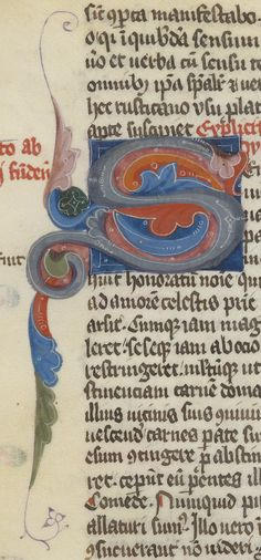 Colorful initial S from illuminated manuscript.