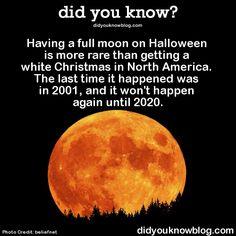 fun fact - Crazy Halloween Facts