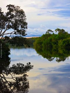 Aquarela dos Deuses Rio Negro - Manaus / AM Fotografia By Maria Mendonça 21/05/2014