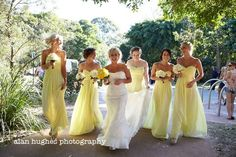 Yellow and Blue-grey Wedding Colour Palette   The Bride's Tree - Sunshine Coast Wedding    Photography by: Alan Hughes Photography