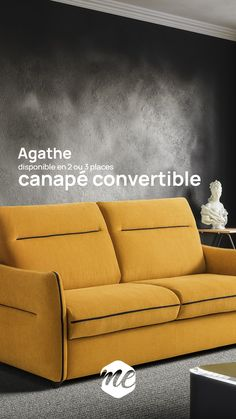 Couch, Decor, Foam Mattress, Storage Trunk, Settee, Decoration, Sofa, Sofas, Decorating