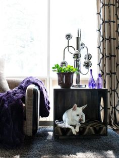 15 DIY Pet Beds That Actually Fit in With Your Decor via Brit + Co