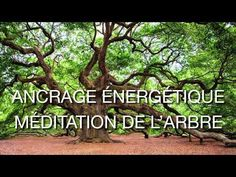 Creative stressed meditation for beginners look at more info Yoga Nidra Meditation, Free Meditation, Meditation For Beginners, Meditation Techniques, Chakra Meditation, Guided Meditation, Meditation Music, Spiritual Enlightenment, Spiritual Guidance