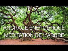 Méditation de l'arbre 15 mn - YouTube
