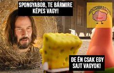 Spongyabob #Spongyabob #Sajt #Bármire #Képes #Mém #Meme #AgyZsibbasztós