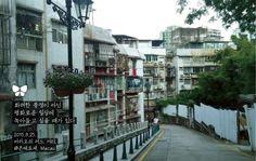 Today Photo From Macau  #today_photo_with_jinair #jinair #진에어 #마카오 #macau