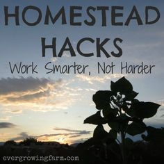 Homestead Hacks - work smarter, not harder