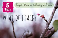 All you need to know on what to pack as an expat woman moving to China #Expat life#China#travel