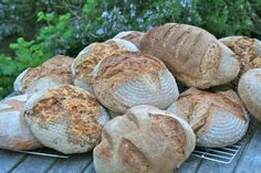 First batch of sourdough loaves straight from the wood-fired oven!   http://blog.bakerybits.co.uk/?p=723