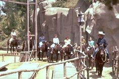 Pack Mules Through Nature's Wonderland.