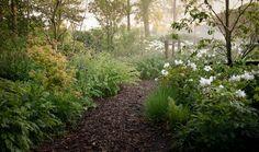 natuurlijke tuin | TuinTuin