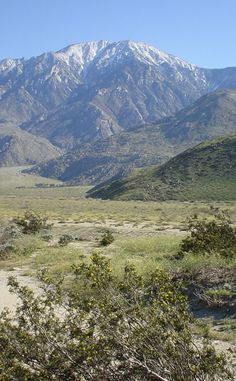 Mt. San Jacinto State Park | Travel | Vacation Ideas | Road Trip | Places to Visit | Idyllwild | CA | State Park | Campground | City Park | Nature Reserve | Scenic Point