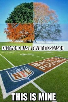 Truth!! Giants Football