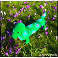 Pattern Tippy Teckel, an African Flower dachshund by Nienepien