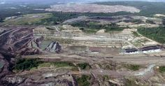 Indonesian coal mining firm gets its license reinstated despite a history of violations Mining Company, Coal Mining, Environmental Science, Conservation, Grand Canyon, History, News, Travel, Historia