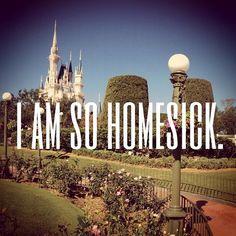 I get this with Disneyland Paris. Disney Fanatic, Disney Nerd, Disney Addict, Disney Love, Disney Magic, Disney Parks, Walt Disney World, Disney Pixar, Disney Stuff