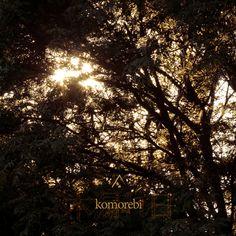 ► Slow Breath by Altus, from the album Komorebi » http://altusmusic.ca