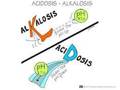 Nursing Mnemonics and Tips: Acidosis - Alkalosis