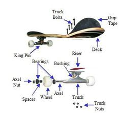 Parts of a skateboard - Google Search