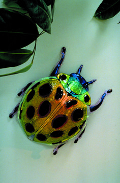 Glass Butterfly, Dichroic Glass, Dragonflies, Bees, Butterflies, Lady, Fused Glass Ornaments, Vacuum Flask, Dragon Flies