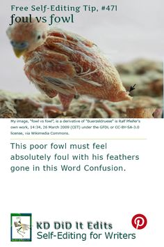 A Word Confusion post that fouls up with fowl for the hungry self-editing writer.