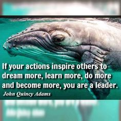 Be inspired by greatness! <3  #Inspired #JohnQuincyAdams #Quote #ThursdayThoughts ... #Stream2Sea #MarineSafety #EcoConscious #Biodegradable #SkinCare #NaturalProducts #NaturalSunscreen #NonToxic #BodyCare #scuba #ScubaGirls #ScubaDiving #UnderwaterLife #SeaLife #CoralReef #ReefProtection #ProtectWhatYouLove #GetInvolved #SaltLife #OceanLife #Surfing #MermaidLife #Scuba #ScubaDiverLife #OceanPhotography #oceandefenders