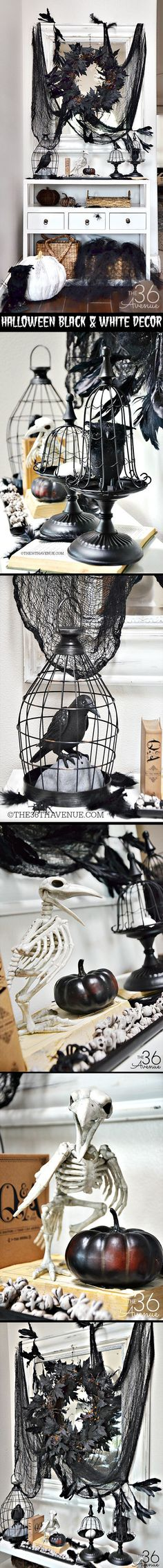 Black and White Entryway Halloween Decor.  The bird cage cloche pedestals are from Michaels.com, animated 'Crow in Cage' is from Target.com, the skeleton raven can be found at spidersoftheweb.com and black, maple leaf wreaths are available at Linens 'n' Things lnt.com. Beware the Birds! Black & White Theme Poe & Hitchcock Halloween Party Decorations & Ideas