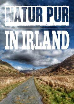 Auf meinem Blog zeige ich dir die schönsten Orte und Reisetipps für den Südwesten der Insel Irlands!