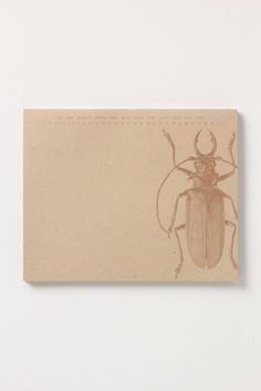 Anthropologie-Beetle Paper Mouse Notepad