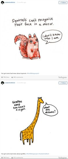 Illustrator Brooke B's @SadAnimalFacts feed is hilarious, quirky, informative, and keeps us coming back for more.