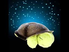 Twilight Turtle, the first plush constellation nightlight ever created, transforms any room into a starry night sky to help comfort children to sleep. From within his plastic shell, Twilight Turtle projects a magical constellation of stars onto bedroom Starry Night Light, Led Night Light, Star Constellations, Cute Turtles, Sea Turtles, Best Baby Gifts, Projector Lamp, Baby Music, Kids Music