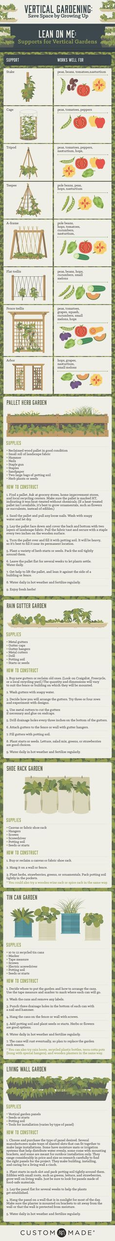 Learn how to grow a vertical garden.