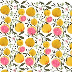 grapefruit, pattern, illustration, painting