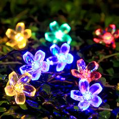 SOLAR FLOWER FAIRY LIGHTS 50 LED  http://www.amazon.com/Innoo-Tech-Lighting-Christmas-Decoration/dp/B0158G91FK/ref&keywords=outdoor+string+lights