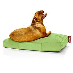 Aus der Kategorie Kissen & Decken  gibt es, zum Preis von EUR 119,95  Das Fatboy Hundekissen Doggielounge Stonewashed in Groß ist eine moderne, strapazierfähige, dick gepolsterte Liegewiese für die großen Vierbeiner. Die intelligente Füllung aus kleinen, langlebigen Styroporperlen passt sich perfekt dem Hundekörper an und gibt ihm Halt in jeder Position und dank der dicken Polsterung liegt der Hund, selbst auf harten Böden, bequem und vor Bodenkälte geschützt. Der kuschelweiche…