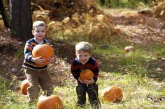 Kids and pumpkins in the Pocono Mountains