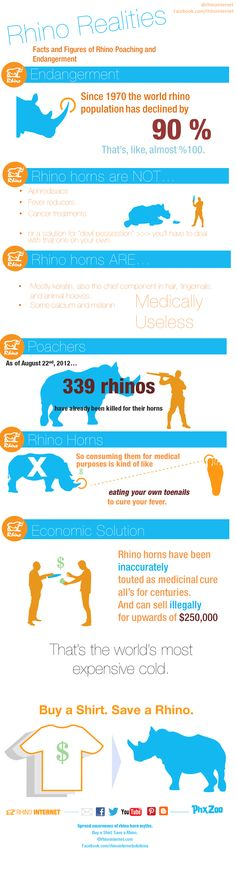 OUR infographic about rhinos on the phoenix zoo blog! Rhino Poaching, Rhinos, Dandy, Infographics, Phoenix, Arizona, Medical, Facts, Blog