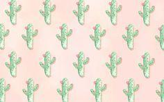 Cute cactus wallpaper for computer Cactus Backgrounds, Laptop Backgrounds, Cute Wallpaper Backgrounds, Wallpaper Downloads, Cute Wallpapers For Computer, Desktop Wallpapers, Cute Laptop Wallpaper, Computer Wallpaper, Iphone Wallpaper