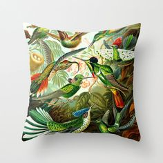 Haeckel Orchids Pillow Cover Decorative Art Throw by ArtfulEscapes