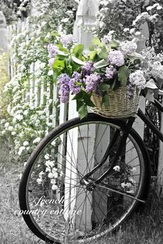 Another variation, but used to display fresh cut flowers, a very temporary display and again, this bicycle wasn't painted.