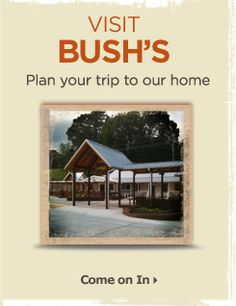 Visit Bush's Beans - Dandridge, TN - 20 minutes from Pigeon Forge and WELL WORTH the trip - great for kids - FREE museum, video tour, country store and a good restaurant... Beautiful drive along the foothills.
