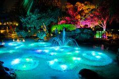 Pixie Hollow. Disneyland