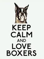 I am in love with boxer dogs!!:)