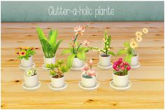 """lina-cherie: """"Clutter-a-holic-plants - (Click for better preview) I loved these so much in Sims 2 I felt they were absolutely necessary to have in Sims 4! :) The set includes 10 converted plants..."""