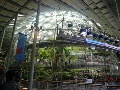 Biodome from Academy of Sciences San Francisco California by mgrayflickr, via Flickr