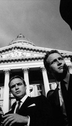 公民権運動のシットインの応援にあらわれたマーロン・ブランドとポール・ニューマン。かこええ!