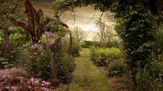 Der Garten von uncaria