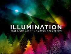 Illumination :: A Morton Arboretum Event {& Giveaway!}