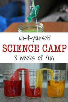DIY summer science camp for kids. Easy experiments and projects.